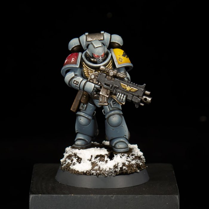 Space Wolves Intercessor